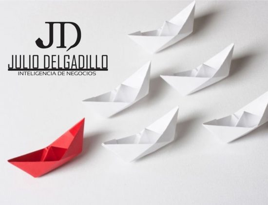 Asesor Julio Delgadillo   Inteligencia de Negocios